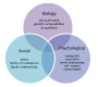 The Biopsychosocial Approach